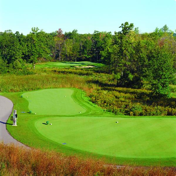 Fieldstone Golf Course : Photo gallery